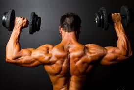 Вариации рядов для более крепкой спины и здоровых плеч