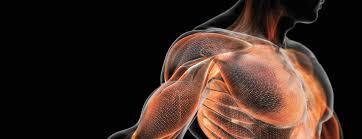 Скорость строит: 5 причин для спринта для мышц и силы